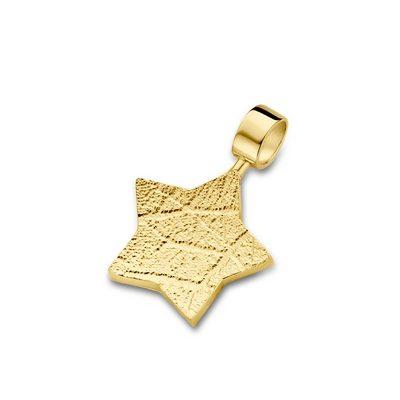 Star Pendant i guld